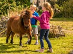 Children with a pony at Eagles Flying, Irish Raptor Research Centre, Ballymote, County Sligo, North West Ireland