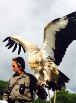 Eagles Flying Director and Zoologist Lothar F. Muschketat with a Himalayan Vulture -  Irish Raptor Research Centre, Ballymote, County Sligo